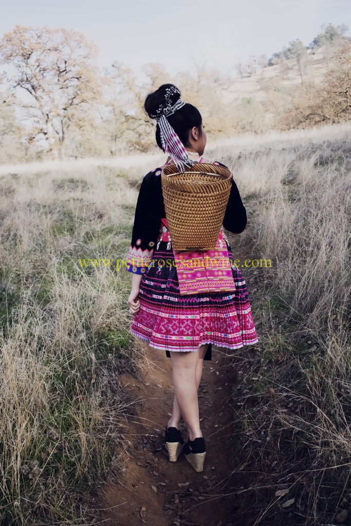 DSC_0513moodyeditblog-683x1024 Fresno Hmong New Year 2017-2018 DIY OUTFITS