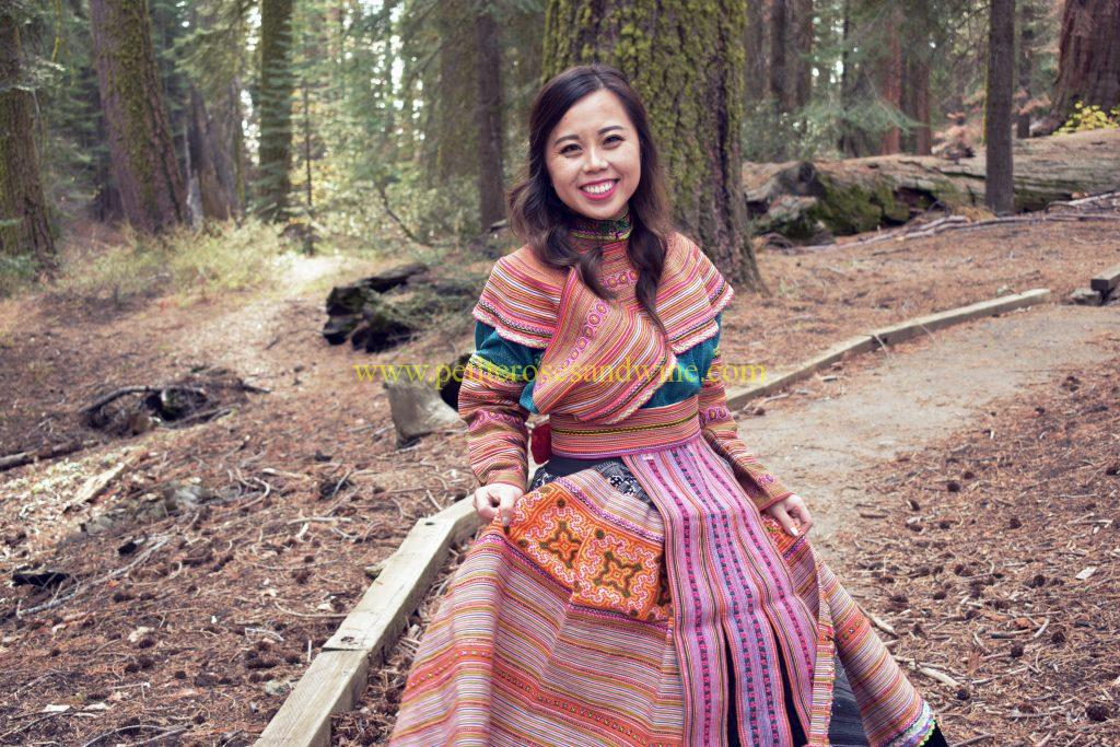 DSC_0042-edit-3-1024x683 Hmong Outfit Series :: Colorful Appliqué & Flower Hmong Hmong Outfit Series